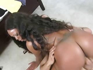 Jayden Starrs round ass