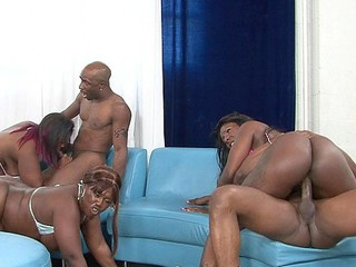 Decollecter, Kelly Starr, Ms. Moist, Ms. Marinate and Telicious offered up their thick asses for this incredible black on black gang bang with some fortunate monster dicks getting double blowjobs and pounding some sweet phat booties!  Full of anal penetration and horny fur pie fuckin', watch those luscious hos go wild!