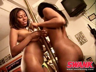 Chocolate lesbo hotties enjoy satisfying each other